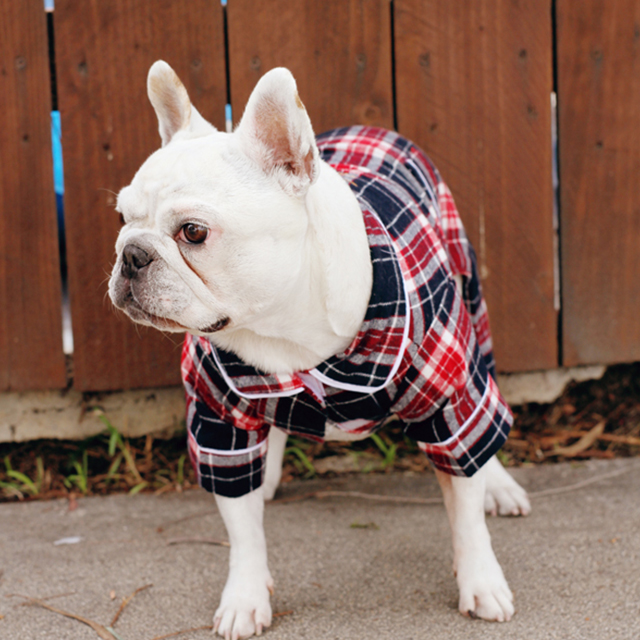 Dog Flannel Pajamas