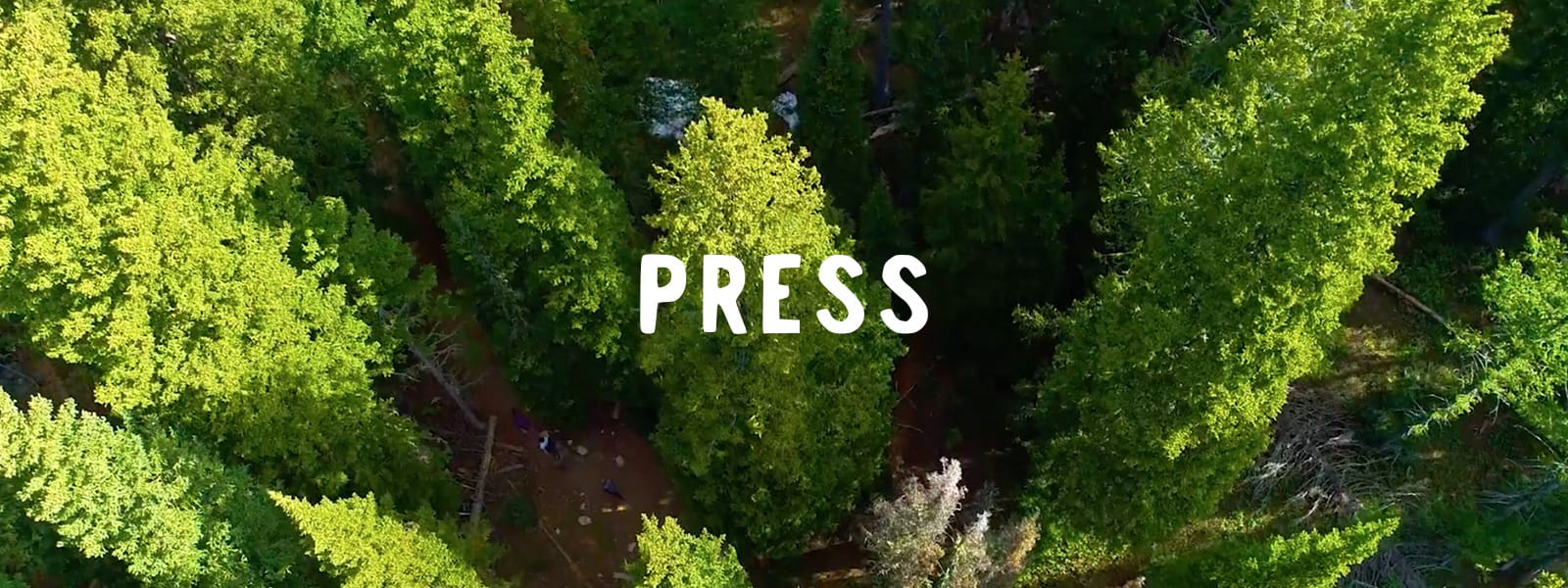 Image of Forest with word Press centered
