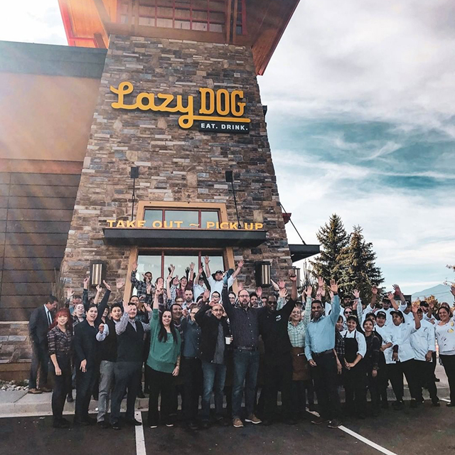 Lazy Dog Restaurant & Bar Opens in Colorado Springs logo