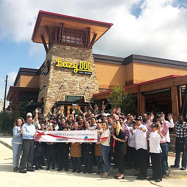 Lazy Dog Restaurant & Bar Opens in Houston's Cypress Crossing logo