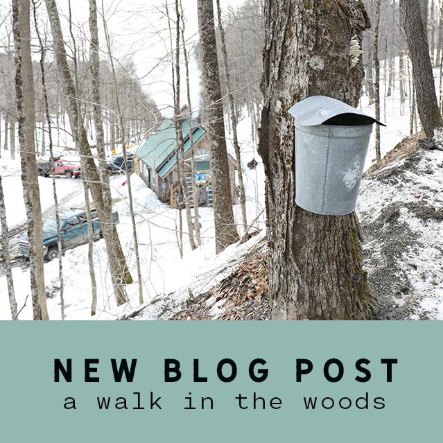 Blog 2